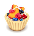 fruit cupcake isolated on white vector image