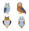 Owl wild bird cartoon vector image vector image