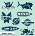 Surfing Beach Labels Set vector image
