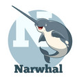 abc cartoon narwhal vector image