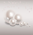 Beautiful pearls on a gray background vector image vector image