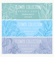botanical set of three flower banners hand drawn vector image