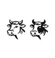 cow head black on white vector image vector image