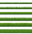 green grass border and white background vector image vector image