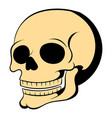 human skull icon cartoon vector image vector image