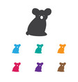 of zoology symbol on koala vector image