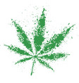 Grunge cannabis green leaf vector image