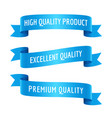 blue ribbons with text set vector image