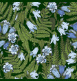 bluebell flowers and fern leaves vector image vector image