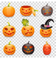 collect pumpkin for halloween vector image vector image