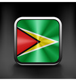 Guyana icon flag national travel icon country vector image