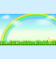 summer background big bright rainbow above green vector image