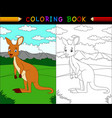 cartoon kangaroo coloring book vector image vector image