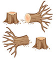 dried wooden log and branch vector image