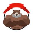 Angry bear athlete Round emblem Large wild animal vector image