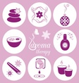 Aromatherapy icons vector image vector image