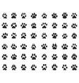 black print paw vector image