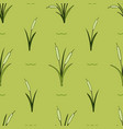 bright flower seamless pattern with green cane vector image vector image