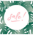 concept of summer sale summer round vector image vector image