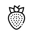 healthy food fruit strawberry sign icon vector image