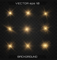 lights sparkles isolated vector image vector image