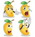 Mango vector image vector image