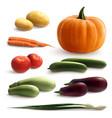 vegetables realistic set vector image