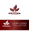 abstract colorful leaf logo vector image