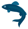 fish is blue graphics isolated on white vector image
