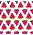 pattern with watermelon vector image vector image
