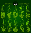 vertical foliage vector image vector image