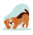 beagle dog pet vector image vector image