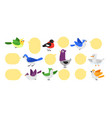 bird label set isolated cute twitting animal vector image
