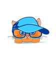 cat in a cap and glasses vector image vector image