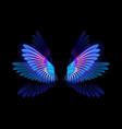 glowing hummingbird wings vector image vector image