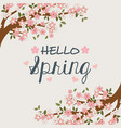 hello spring label with tree branch and flowers vector image