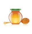 jar and dipper for honey vector image vector image