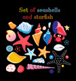 set sea shells and starfis vector image
