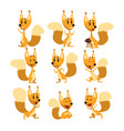 funny squirrel cartoon character set cute forest vector image