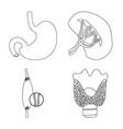 body and human symbol set vector image vector image