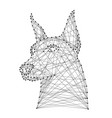 doberman dog head from abstract futuristic vector image