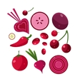 Fresh Red Fruits And Vegetables Set vector image vector image
