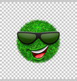 green grass field 3d face wink smile vector image vector image