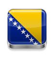 Metal icon of Bosnia and Herzegovina vector image vector image