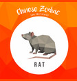 rat chinese low poly animals low poly logo icon vector image vector image