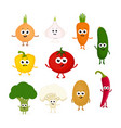 set of different vegetables vector image