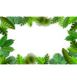 tropical jungle background with palm trees leaves vector image vector image