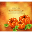 Vintage background with three pumpkins vector image