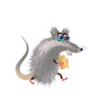 fluffy cartoon mouse with a piece of cheese on vector image