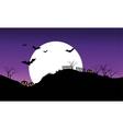 Halloween bat on purple sky backgrounds silhouette vector image vector image
